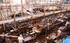 Produktionsmaschinen für die Lebensmittelindustrie