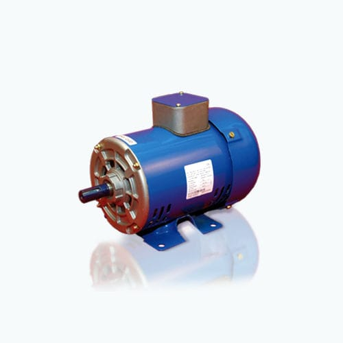 AC-Motor / 3-Phasen / 100 V / 4-polige - CG Power Systems