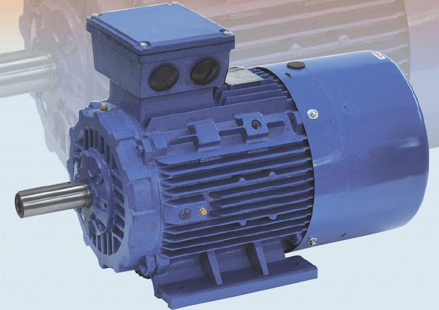 AC-Motor / 3-Phasen / Asynchron / 400V - ASM series - MAGNETIC Srl