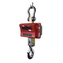 Kranwaage mit LED-Anzeige / robust / Akku / für die Hüttenindustrie