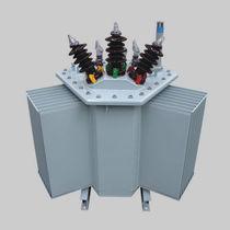 Verteilungstransformator / getaucht / AC / für Industrieanwendungen