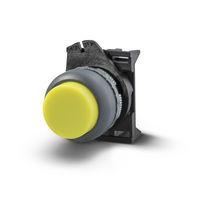 Momentaktions-Drucktaster / Unterputz / IP65