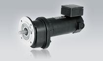 DC-Elektrogetriebemotor / parallel / mit rechtsseitiger Verzahnung / Permanentmagnet
