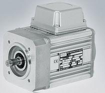 DC-Motor / bürstenlos / 230V / IP54