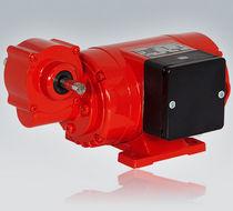 DC-Elektrogetriebemotor / Winkel / Schnecken
