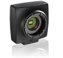 Kamera zur Anzeige / Farb / CCD / für Mikroskop