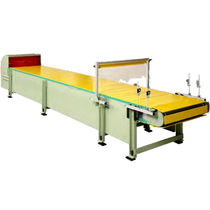 Kettenförderer / horizontal / Paletten / Aluminium