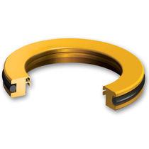 Ring-Lippen-Dichtung / kreisförmig / PTFE / dynamisch