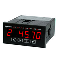 Prozessanzeiger / digital / für Einbau / mit Alarm