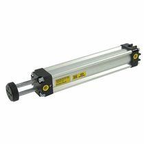 Pneumatischer Zylinder / doppeltwirkend / Parallelkolbenstange / mit Magnetkolben