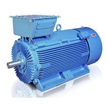 AC-Motor / Asynchron / 690V / elektrisch isolierende