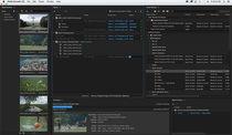 Entwicklungssoftware / Management