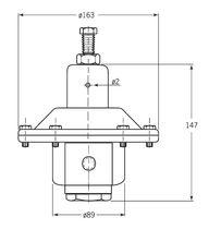 Gasdruckregler / einstufig / Membran / Edelstahl