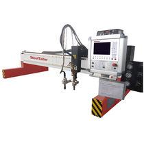 Edelstahl-Schneidmaschine / Kupfer / Lebensmittel / Autogenschneidkopf
