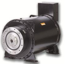 Elektromotor -Drehmomentmotor / AC / 400V