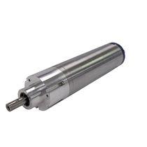 Elektrischer Zylinder / Zylinder