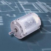 DC-Motor / Bürsten / 24V / Permanentmagnet