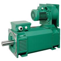 3-Phasen-Motor / Gleichstrom / Induktion / 230V