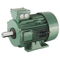 AC-Motor / Asynchron / 400V / 380V