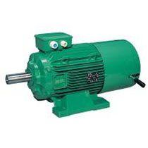 AC-Bremsmotor / Asynchron / IP55
