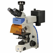 Fluoreszenzmikroskop / Labor / Digitalkamera