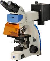 Optisches Mikroskop / Inspektion / Digitalkamera / Fluoreszenz Lifetime Imaging