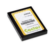 """SSD-Festplatte / Innen / SATA / 2,5"""""""
