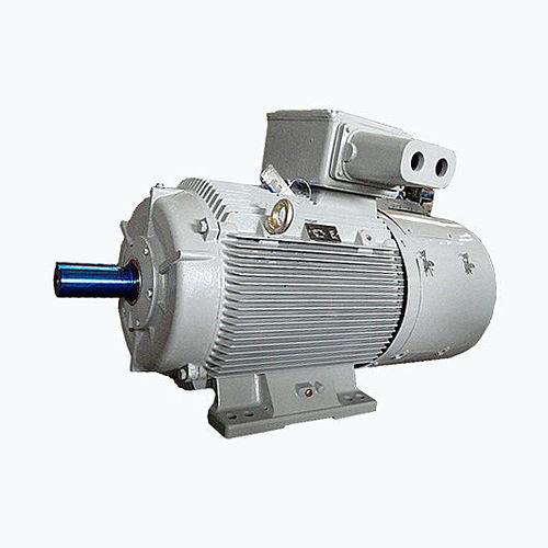 AC-Motor / 3-Phasen / 3-Phasen / Asynchron - CG Power Systems