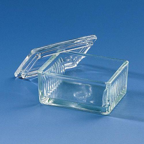 Slide-Becken / Natronkalk / Glas / zur Schiefferdecker-Färbung