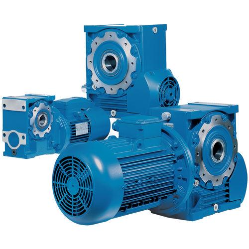 Winkelumlenkungs-Elektrogetriebemotor / Schnecken / Hohlwelle Cat. A Rossi