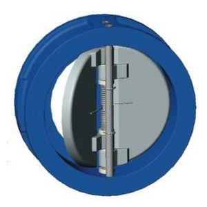 Gusseisenrückschlagventil / Doppelklappe / Zwischenflansch / für Wasser