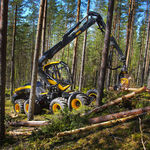 Holzerntemaschine auf Reifen / Laufkäne