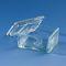 Glasbecken / zur Schiefferdecker-FärbungBRAND