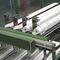 Horizontale Absackmaschine / automatisch / für die Lebensmittelindustrie BF60C B&B - MAF GmbH & Co. KG