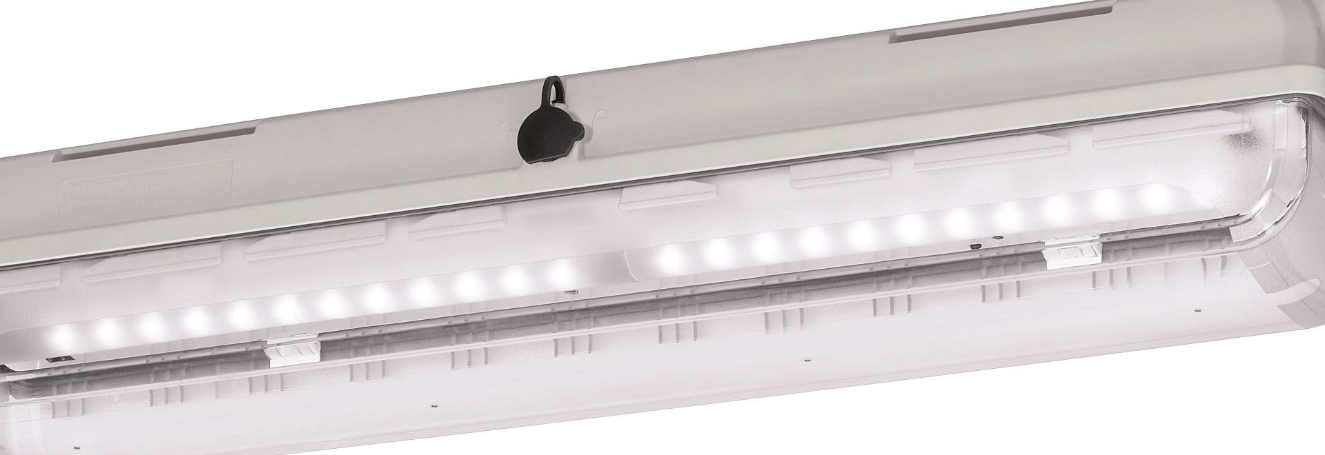 Beste Lichtausbeute, bewährtes Ex-Gehäuse: Leichte, langlebige LED-Leuchten zur Allgemeinbeleuchtung
