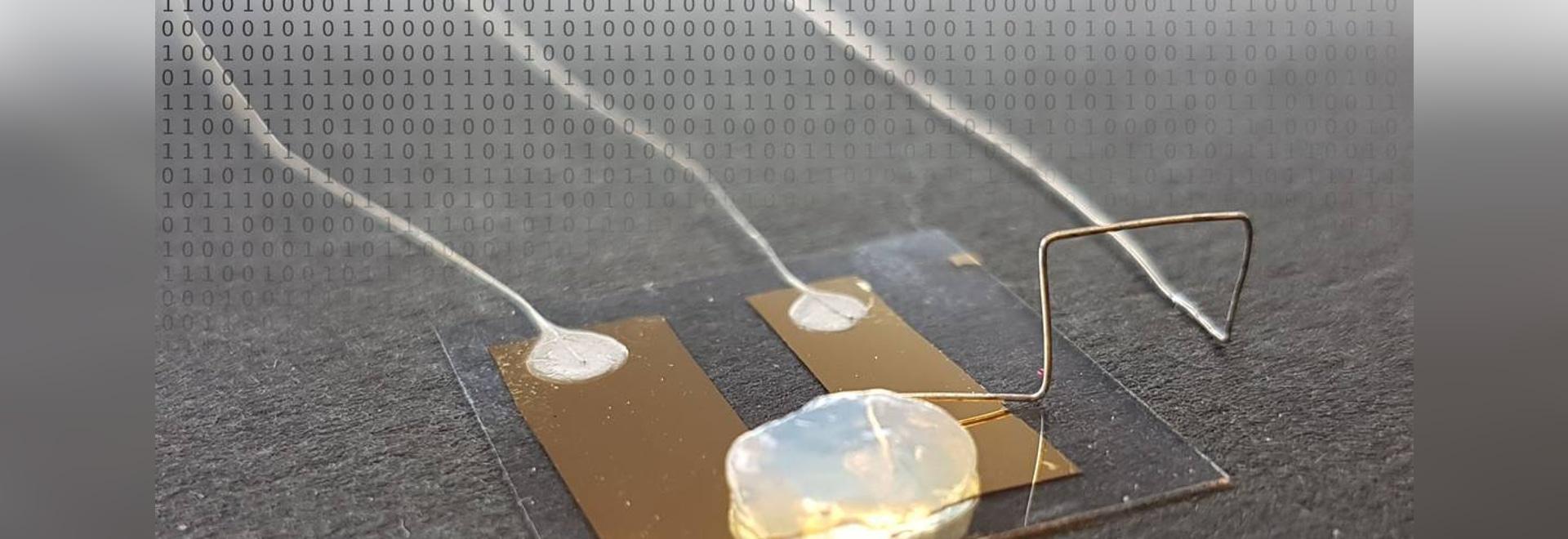 KIT Physicists Develop Worlds am kleinsten, Einzel-Atom-Transistors