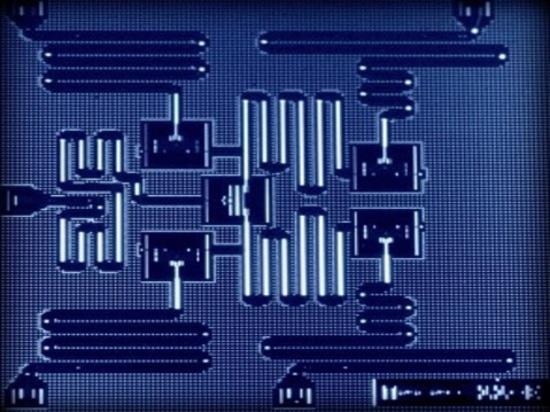 Prozessor des Qubits fünf, Höflichkeit von IBM