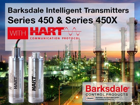 BiT - Barksdale Intelligenter Messumformer