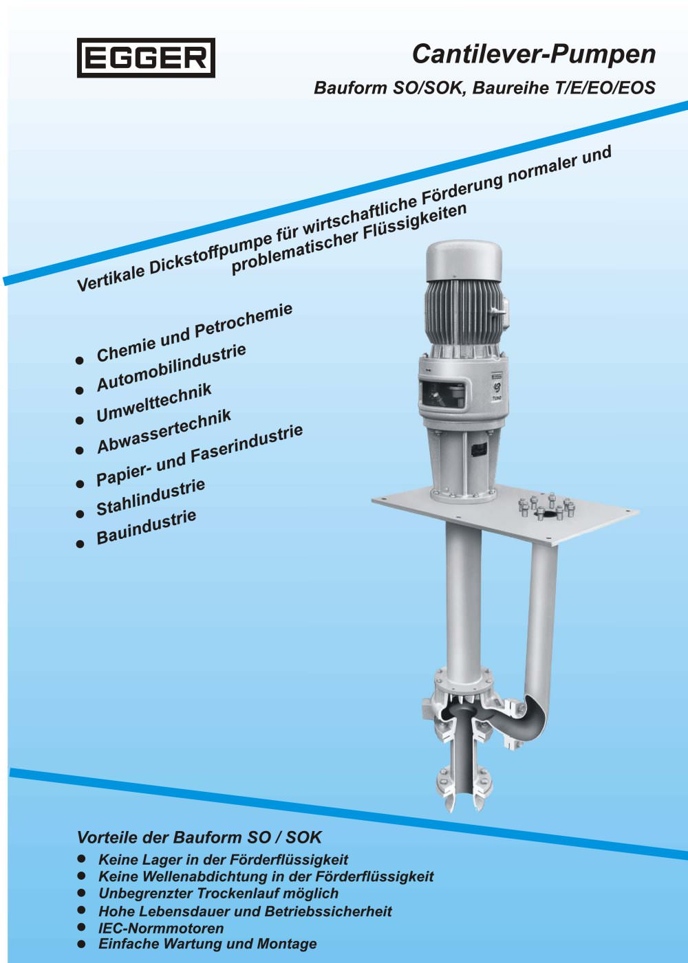 Pumpenauslegung pdf