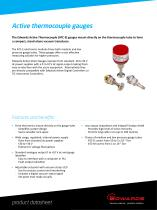 Active Thermocouple Gauges Datasheet