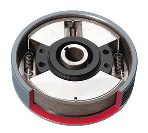Zentrifugal-Schaltkupplung