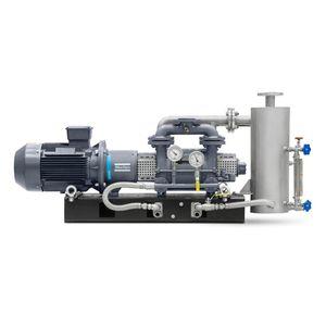 Flüssigkeitsring-Vakuumpumpe