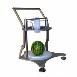 Obst- und Gemüseschneider / Kohl