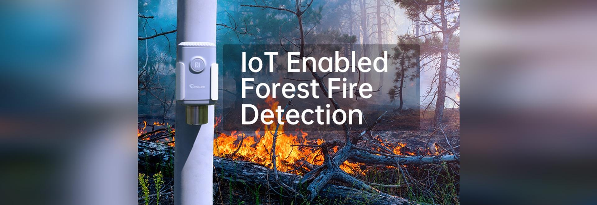 Intelligente IoT-basierte Sensornetze für intelligentes CO2-Monitoring und zuverlässige Waldbranddetektion