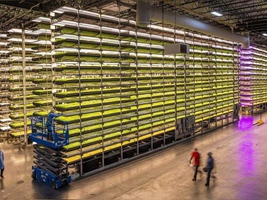 AeroFarms ist nach eigenen Angaben der Marktführer im Bereich der vollständig kontrollierten vertikalen Indoor-Farming mit einer 390-mal höheren Produktivität pro Quadratmeter pro Jahr im Vergleich...