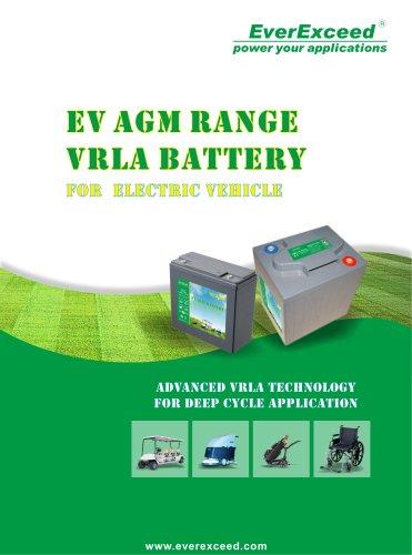 AGM battery EV series