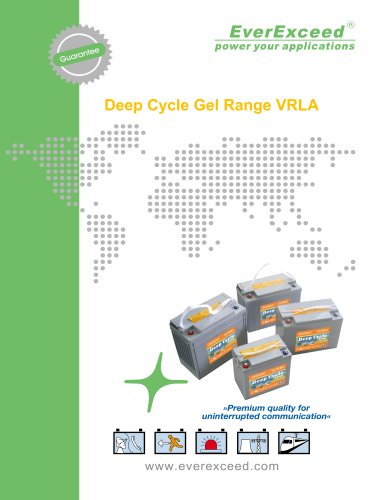 Deep cycle battery 12 series