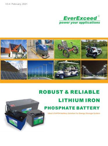 LiFePO4 battery LDP 12-100