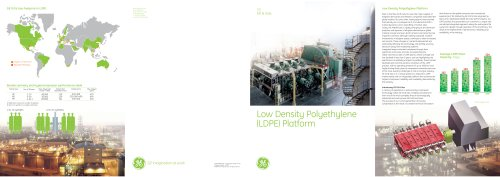 Low Density Polyethylene (LDPE) Platform