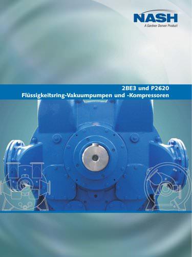 2BE3 und P2620 - Deutsch